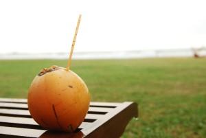 coconuts_juice002