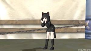 ドラクエ10 黒猫セット かわいい