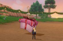 ドラクエ10 テンの日 フライング クリスマス プレゼント