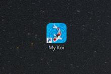 My Koi My 鯉 steam パソコン